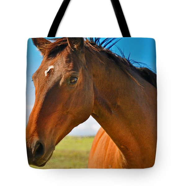 Tote Bag featuring the photograph Horse by Sabine Edrissi