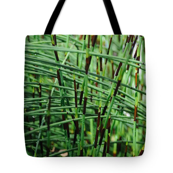 Tote Bag featuring the photograph Horse Tail Zen Garden by Haleh Mahbod