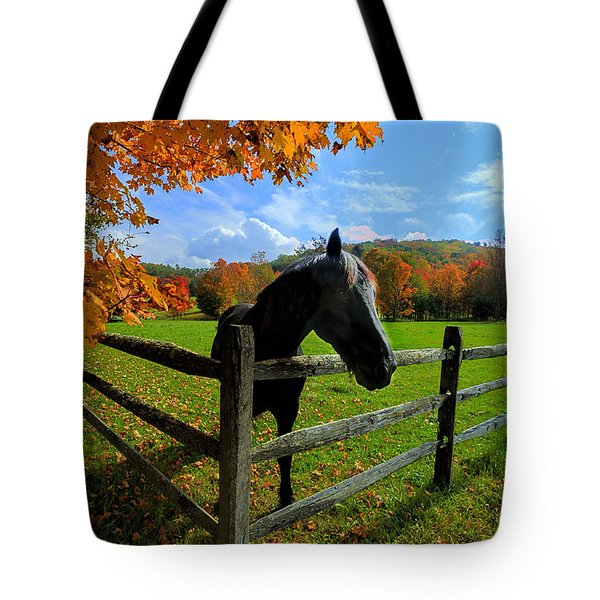Horse Under Tree By Fence Tote Bag by Dan Friend