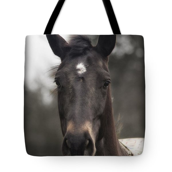 Horse With Gentle Eyes Tote Bag