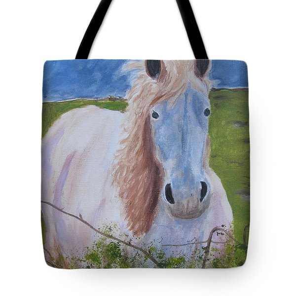 Horse With Stormy Skies Tote Bag by Dawn Dreibus