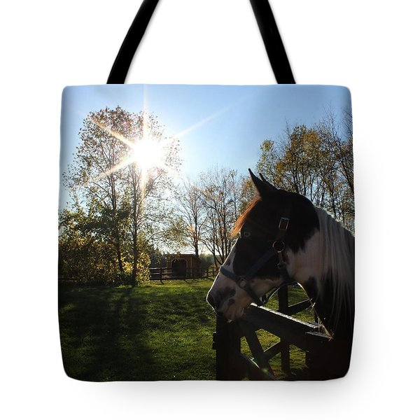 Horse With Sunburst Tote Bag