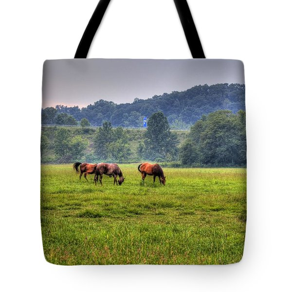 Horses In A Field 2 Tote Bag