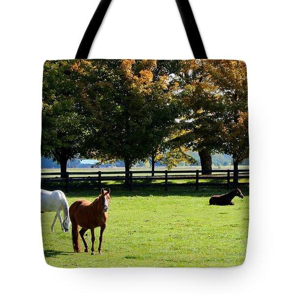 Horses In Fall Tote Bag