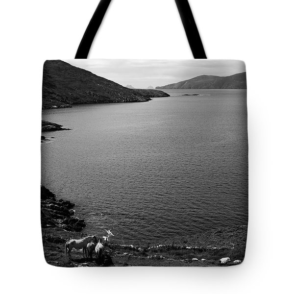 Horseshoe Coast Tote Bag by Aidan Moran