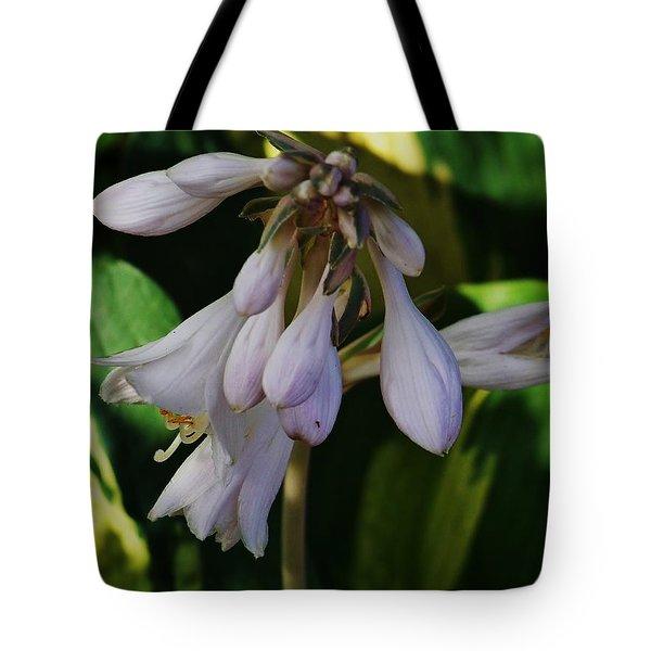 Hosta Blooms Tote Bag