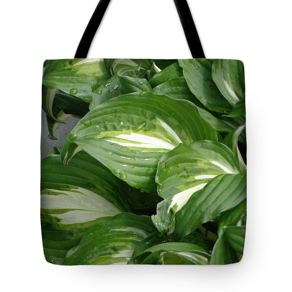 Hosta Leaves After The Rain Tote Bag by Christina Verdgeline