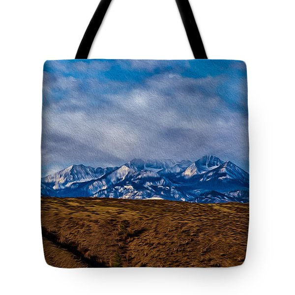 Hot Air Baloon Ride In The Methow Tote Bag by Omaste Witkowski