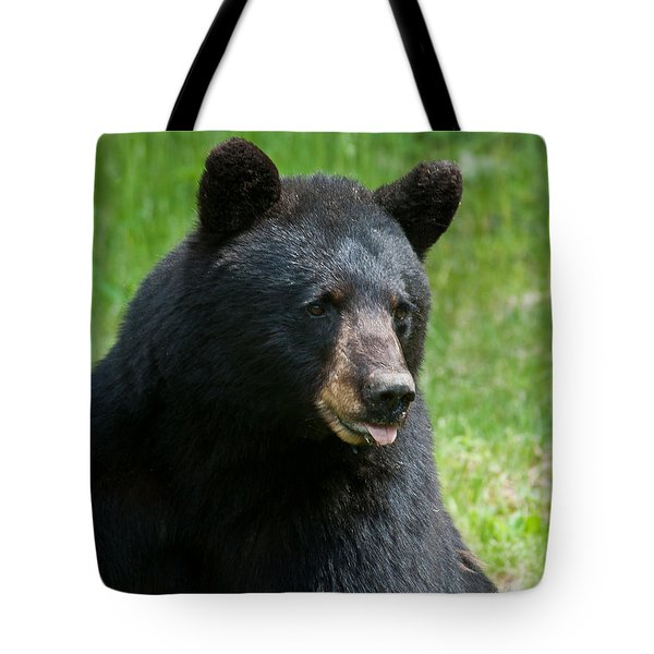 Hot Day In Bear Country Tote Bag