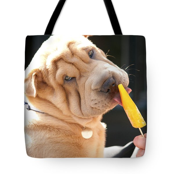 Hot Dog Tote Bag by Terri Waters