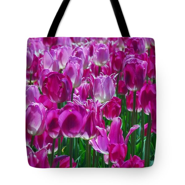 Hot Pink Tulips 3 Tote Bag by Allen Beatty