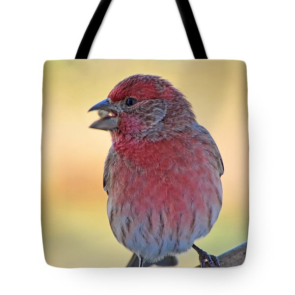 House Finch II Tote Bag by Debbie Portwood