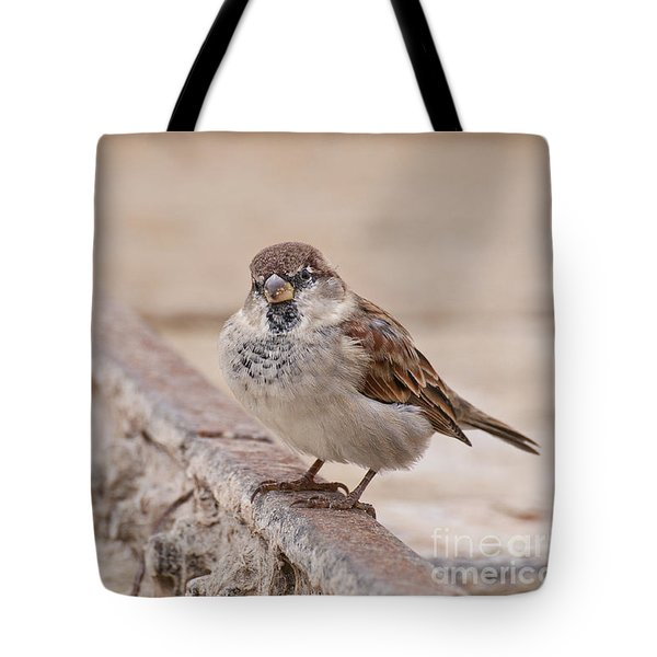House Sparrow Tote Bag by Simona Ghidini