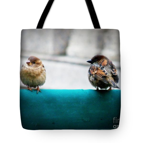 House Sparrows Tote Bag