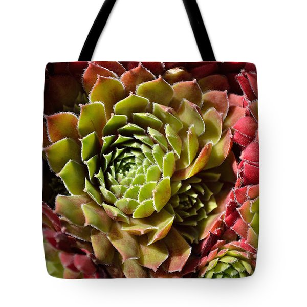 Tote Bag featuring the photograph Houseleek Group by Scott Lyons