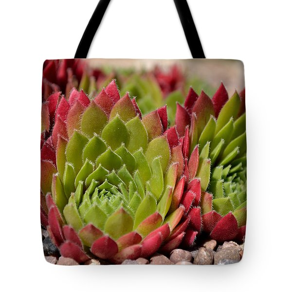Houseleeks Aka Sempervivum From The Side Tote Bag
