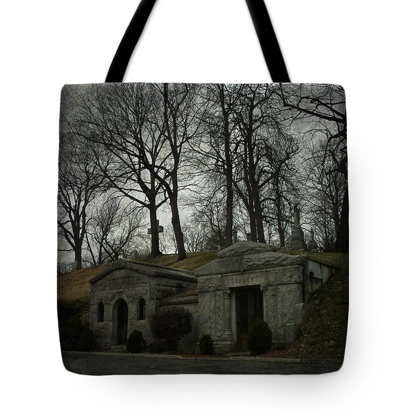 Houses Of The Holy Tote Bag by Cynthia Lassiter