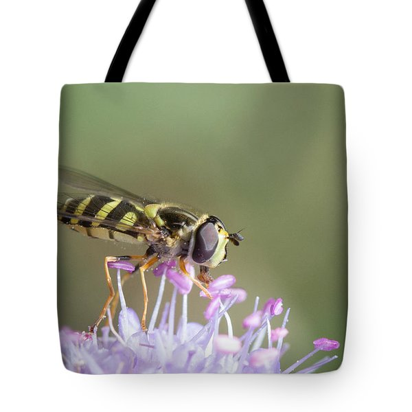 Tote Bag featuring the photograph Hoverefly - Syrphus Vitripennis by Jivko Nakev