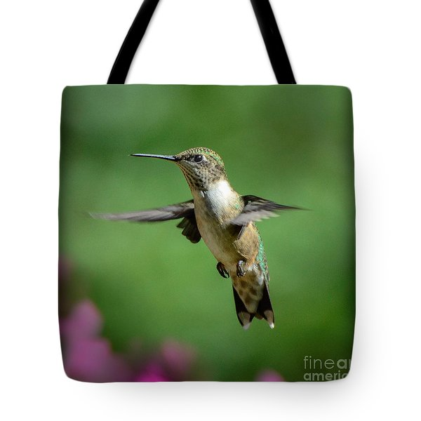 Hovering Hummer Tote Bag by Amy Porter