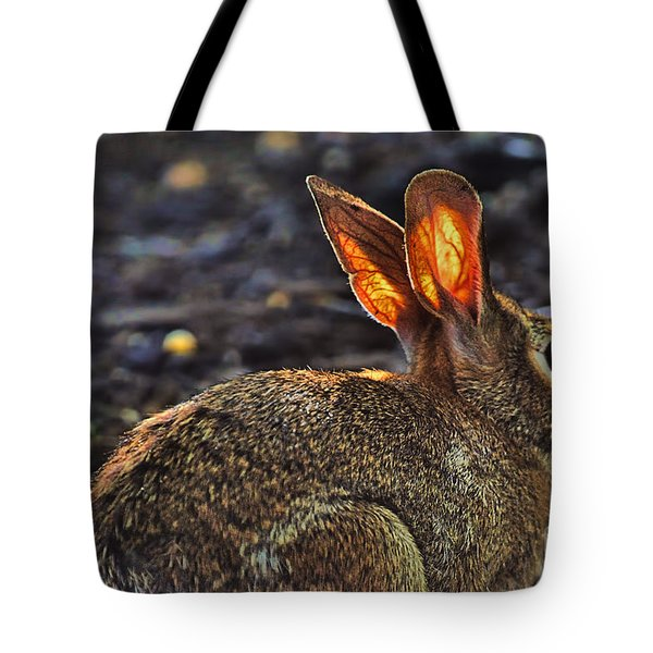 How Bout Them Ears Tote Bag by Dan Friend