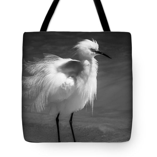 How Do I Look- Bw Tote Bag