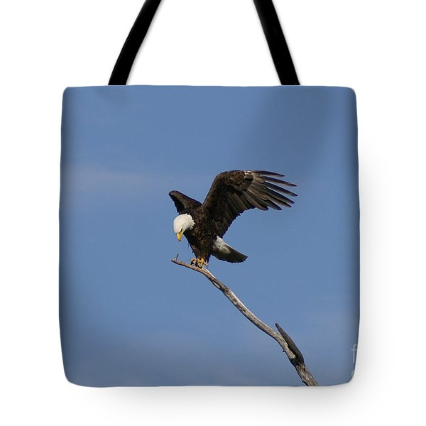 How My Claws Tote Bag by Lori Tordsen
