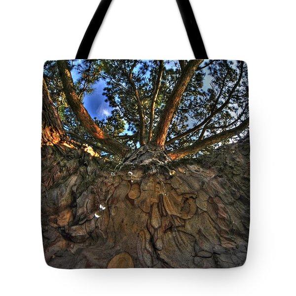 How Sweet It Is Tote Bag by Michael Frank Jr