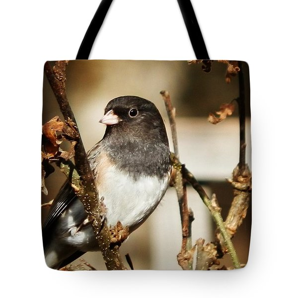 How's This Babe? Tote Bag