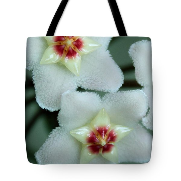 Hoya Tote Bag by Debbie Hart