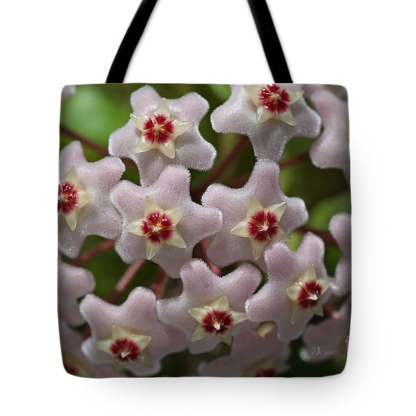 Hoya Waxflower Tote Bag