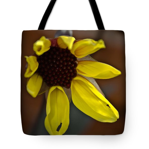 Tote Bag featuring the photograph Huangdi by Joel Loftus