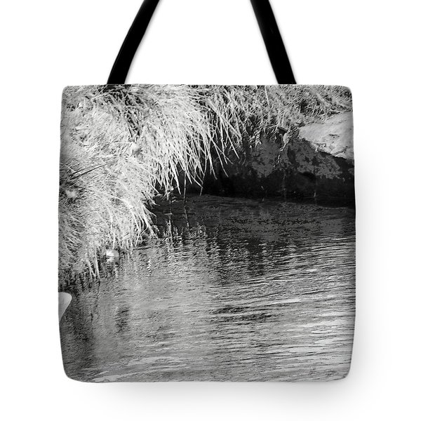 Huck Finn And The Water Cave Tote Bag by Lenore Senior