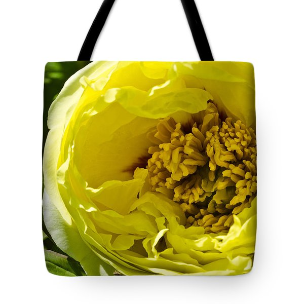 Huge Yellow Flower Tote Bag
