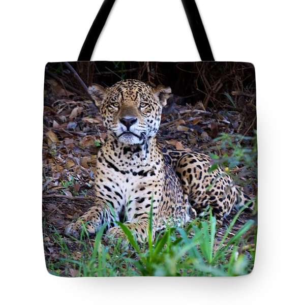 Hugo Waking 2 Tote Bag