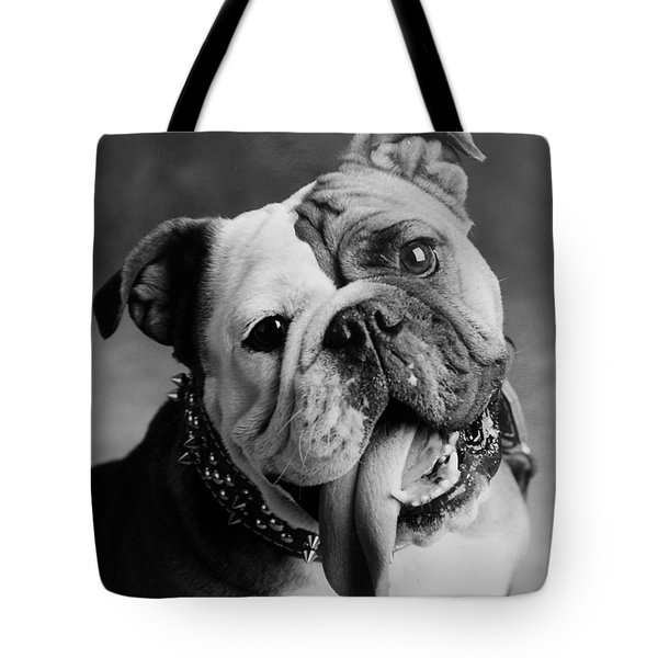 Tote Bag featuring the photograph Huh by Jill Reger