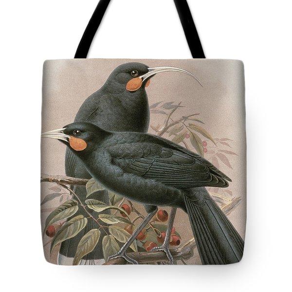 Huia Tote Bag by Johan Gerard Keulemans