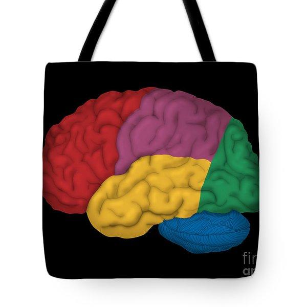 Human Brain, Lateral View Tote Bag