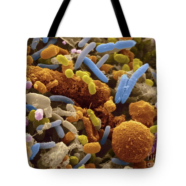 Human Feces Containing Bacteria Tote Bag by Scimat