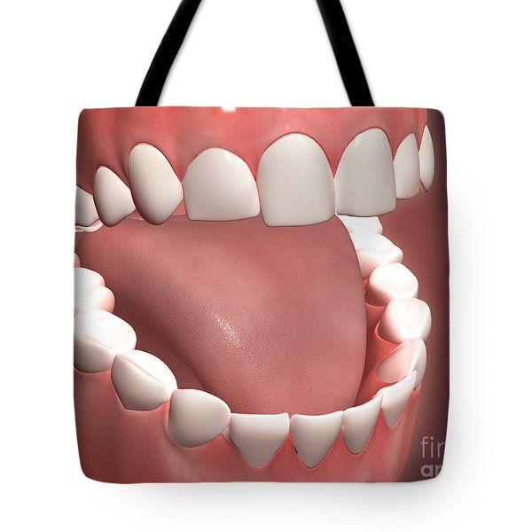 Human Mouth Open, Showing Teeth, Gums Tote Bag by Stocktrek Images