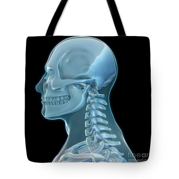 Human Skeleton, Artwork Tote Bag