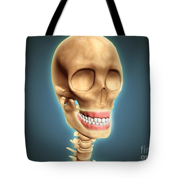 Human Skeleton Showing Teeth And Gums Tote Bag by Stocktrek Images