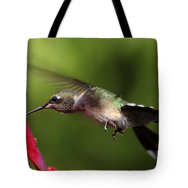 Look Hummingbird Eyelashes Tote Bag