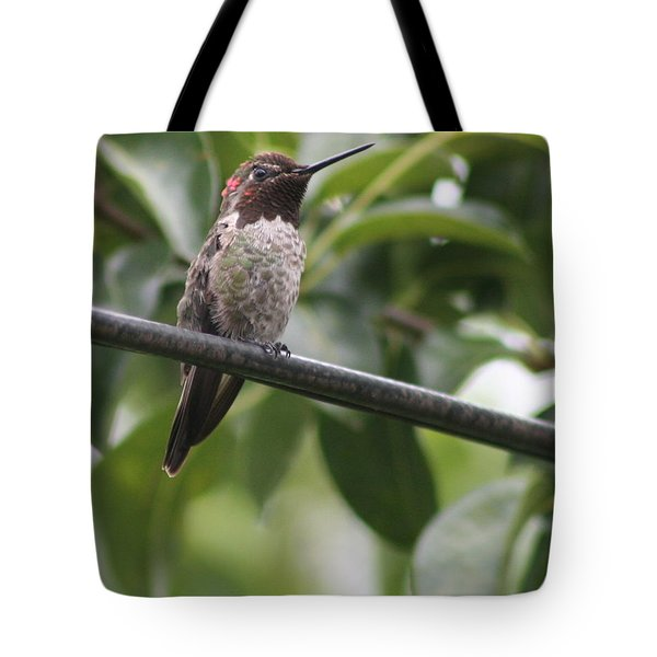 Hummer On A Wire Tote Bag