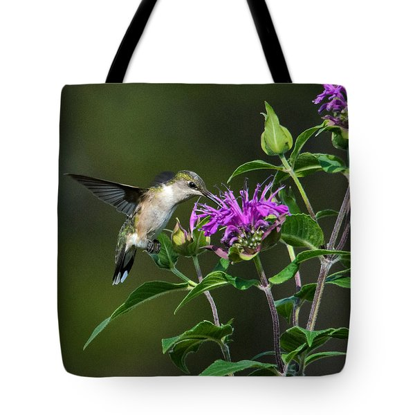 Hummer On Bee Balm Tote Bag