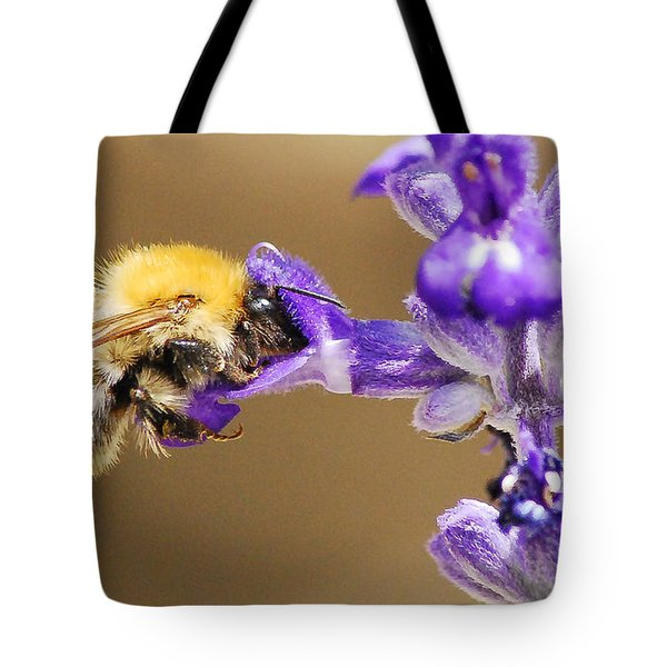 Tote Bag featuring the photograph Humming Bee  by Stwayne Keubrick