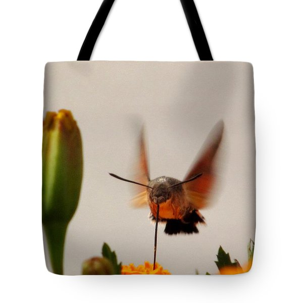 Humming Bird At Works Tote Bag