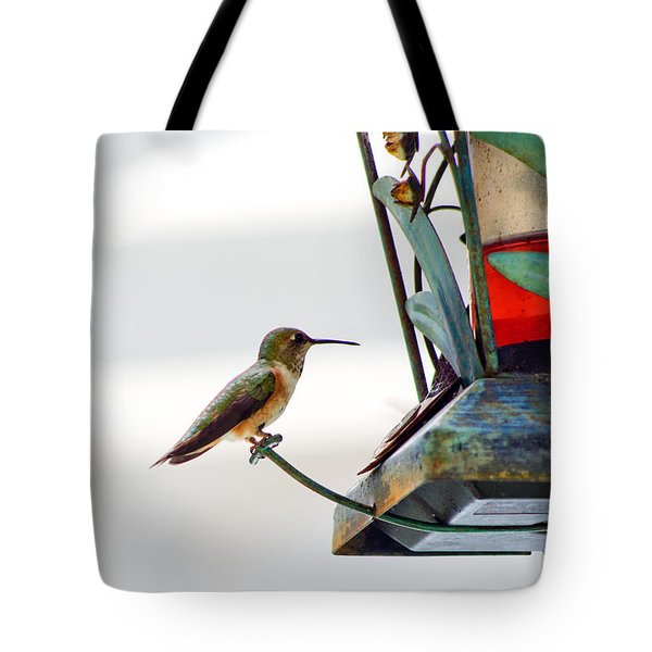 Hummingbird At Rest Tote Bag by Adria Trail