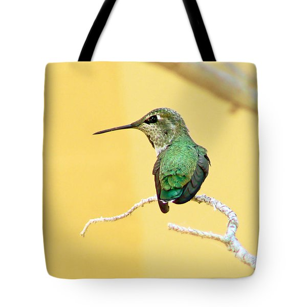 Hummingbird At Rest Tote Bag