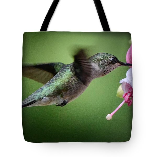 Hummingbird Carbs Tote Bag by Amy Porter