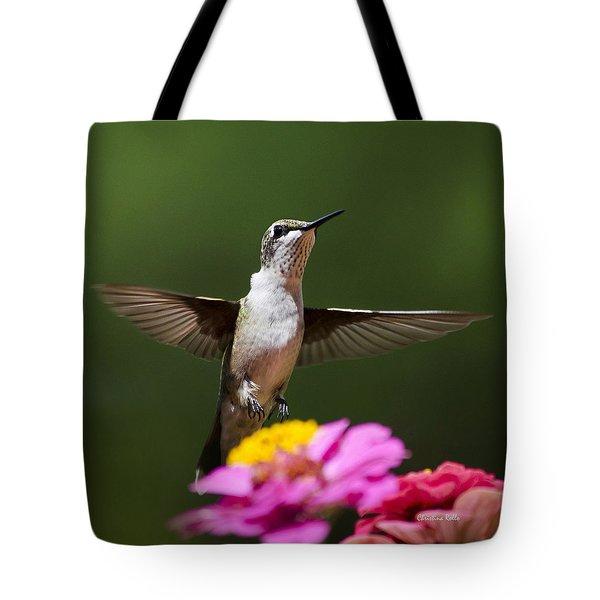Hummingbird Tote Bag by Christina Rollo